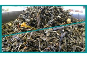 Xiang pian greentea 香片绿茶