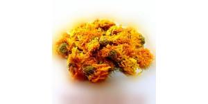 marigold 金盏花